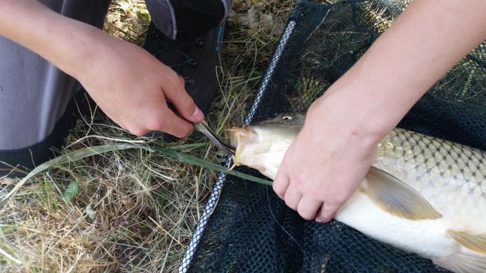 Ganztagesfischen 01.08.20